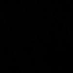 TRILOBAL-PLAIN_BLACK_BEV-126-01000