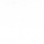 VISCOSE-LYCRA-KNITS_WHITE_ING-GA145LG210-03000
